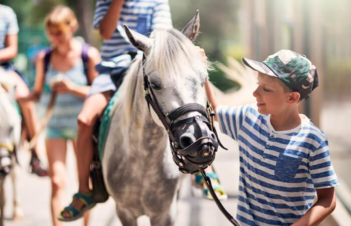 Community Center Horseback Riding