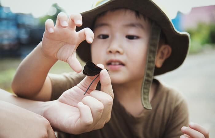 Kids Konnection Bug Hunt